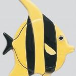 Gil Fish