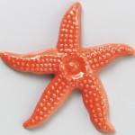 Star Fish-Orange